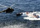 Изъято 4 каспийских тюленя и 87 осетров