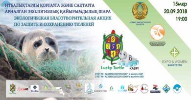 Время не ждет. Каспийский тюлень в опасности!