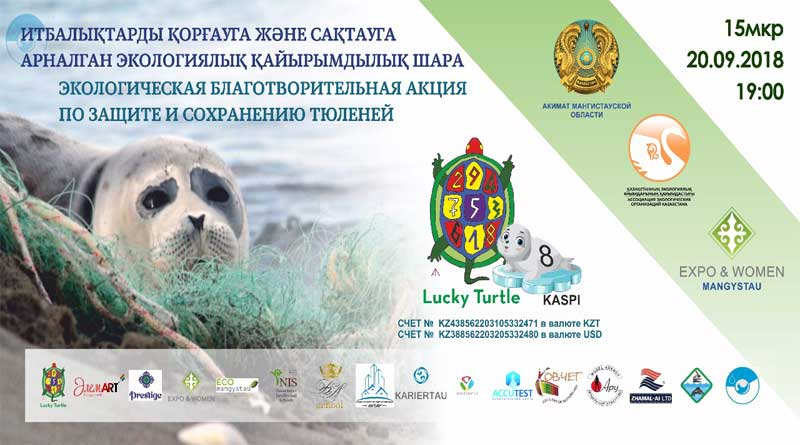 Благотворительная акция в защиту каспийского тюленя, Актау