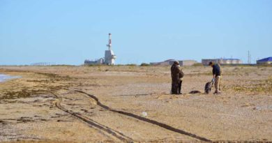 Казахстанская экспедиция